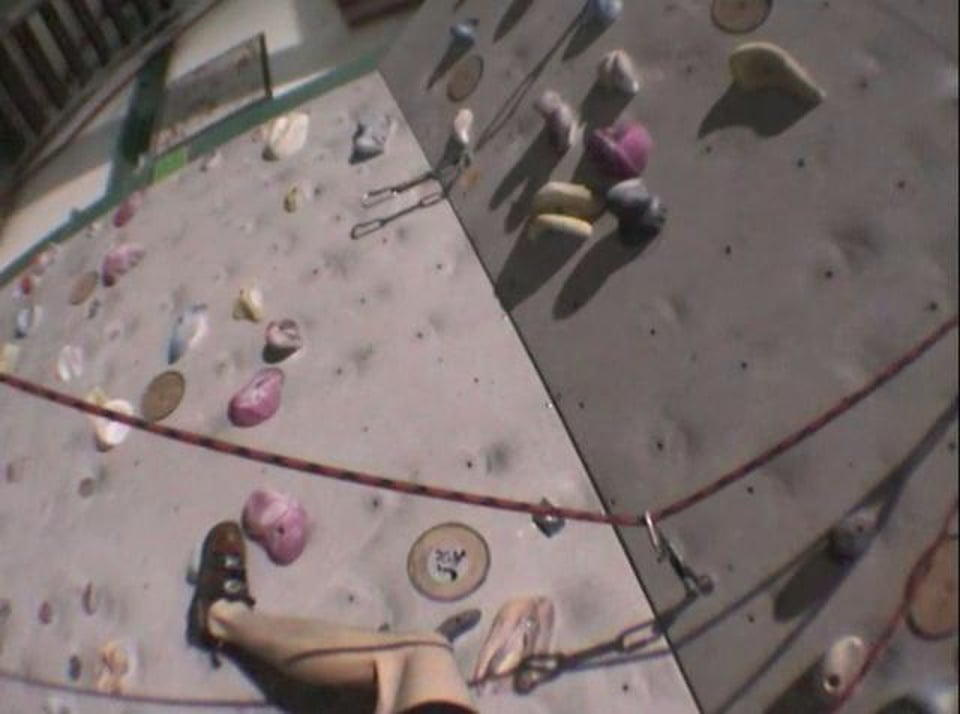 Climbing in the Vertical World